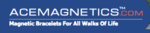 Acemagnetics_small