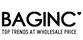 Baginc_small