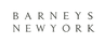 Barneys-new-york_small