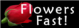 Flowers-fast_small